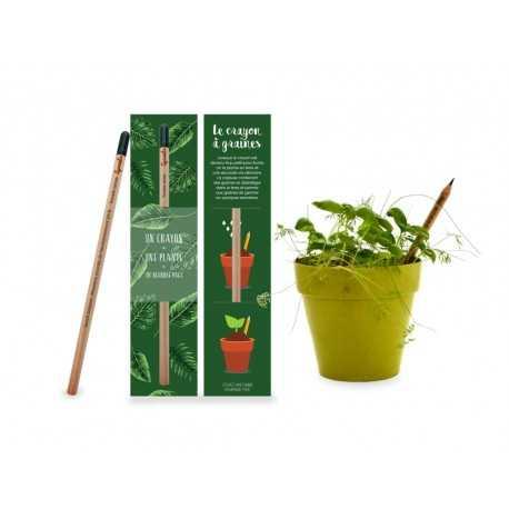 Crayon Graine à Planter Crayons publicitaires