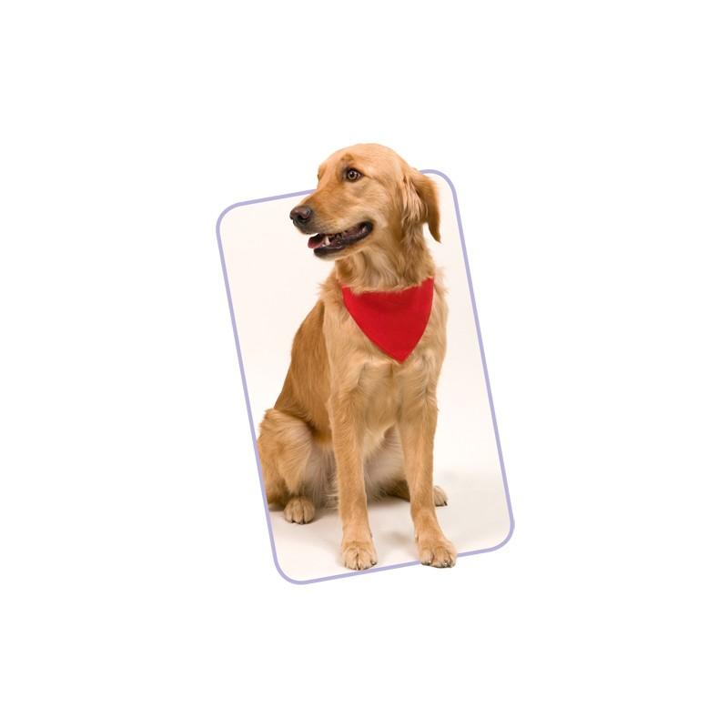 Collier bandana publicitaire roco ANIMAUX
