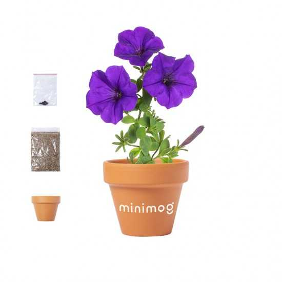 Pot de Fleurs Soltax Pot de fleurs publicitaire